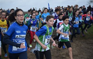 Des podiums au Cross de Chinon